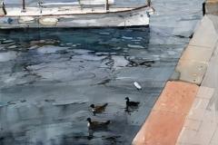 Birds Swimming, Dubrovnik