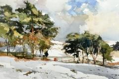 Snow on Lyme Park