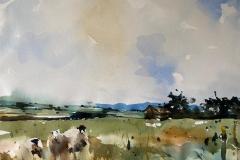 Landscape-3-August
